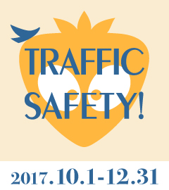 Traffic Safety  2017 Part2
